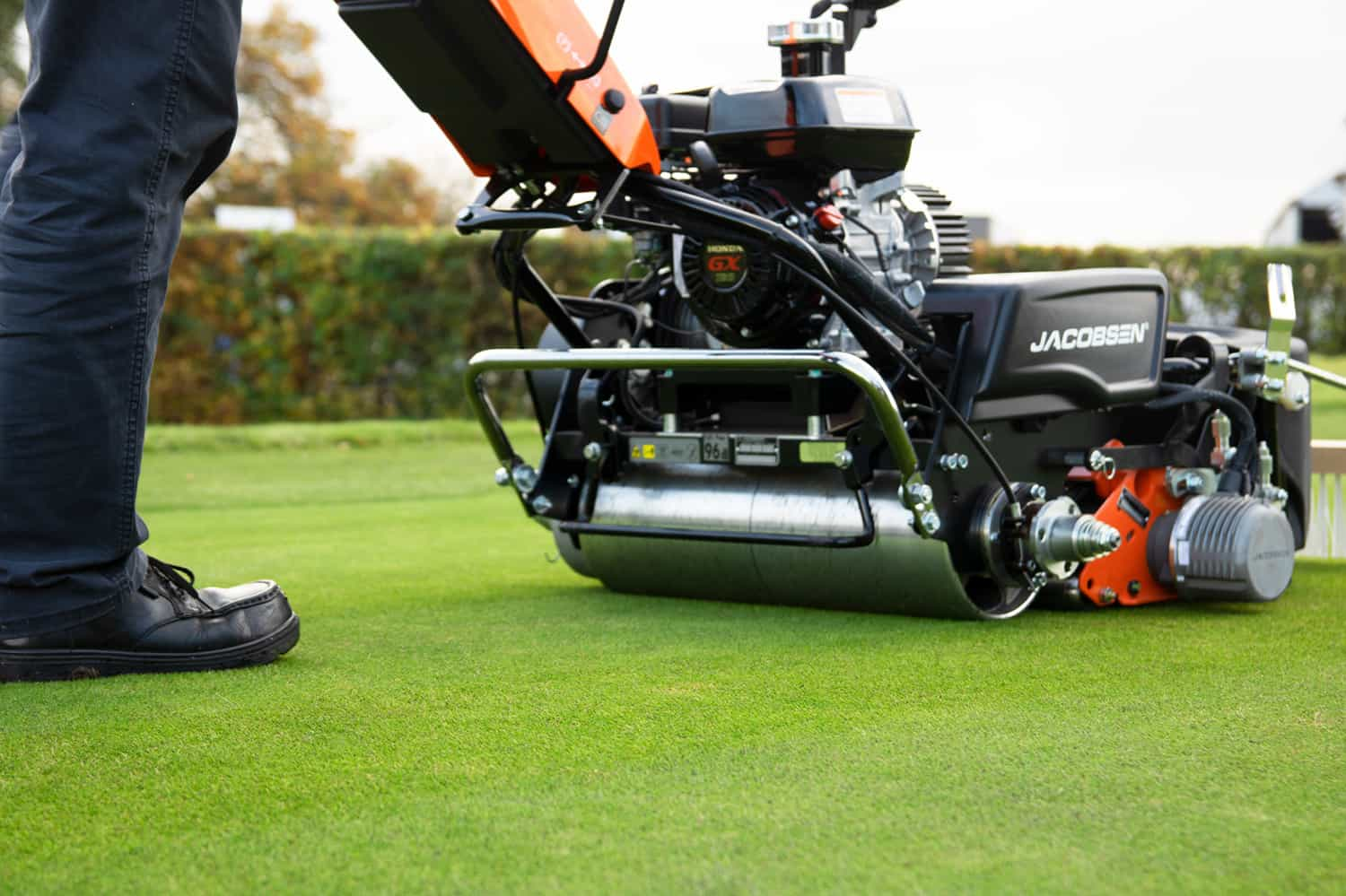 TPPL and NEPO Grounds Maintenance Equipment and Plant Framework